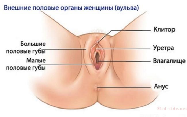 Основные причины появления боли в клиторе. Способы лечения, экстренные меры