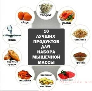 Как растут мышцы и какую роль играет питание в этом процессе
