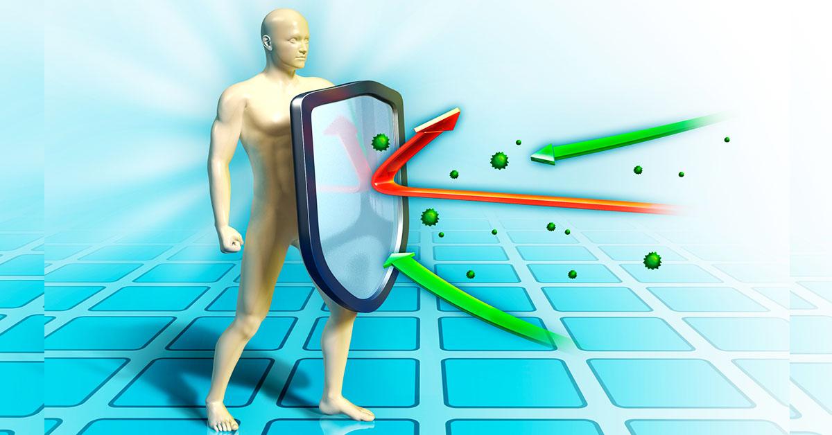 Здоровый организм человека