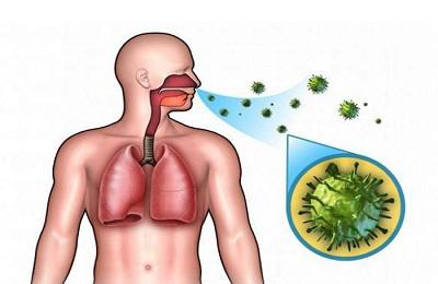 Вирус в организме