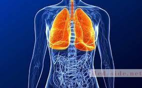 Лекарственное обеспечение при заболеваниях органов дыхания: возможности и решения