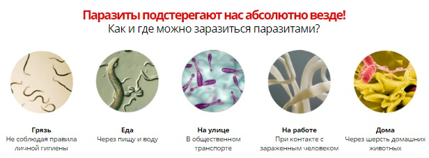 Пути заражения паразитами
