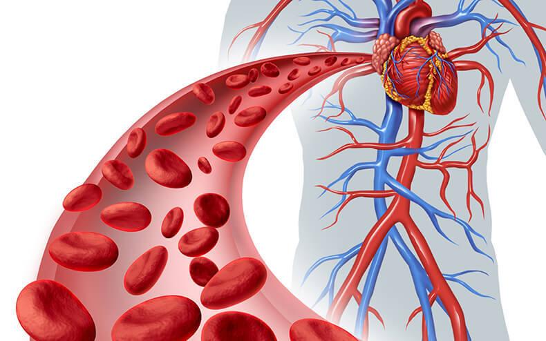 Ухудшение состава крови